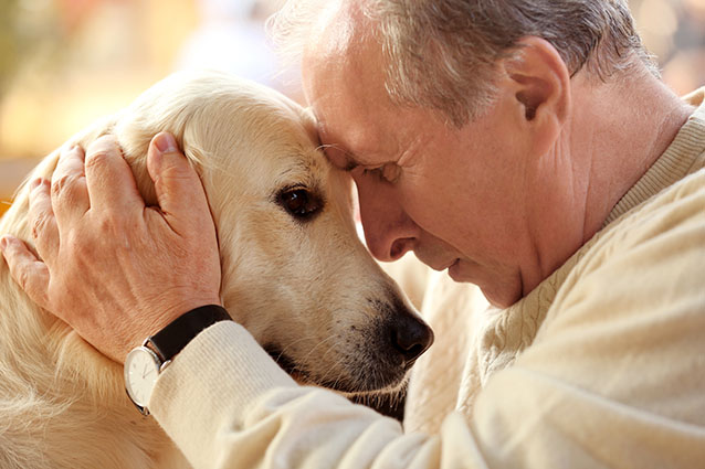 Living in a Pet-Friendly Austin Retirement Community