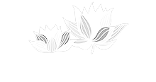 Park View Estates logo