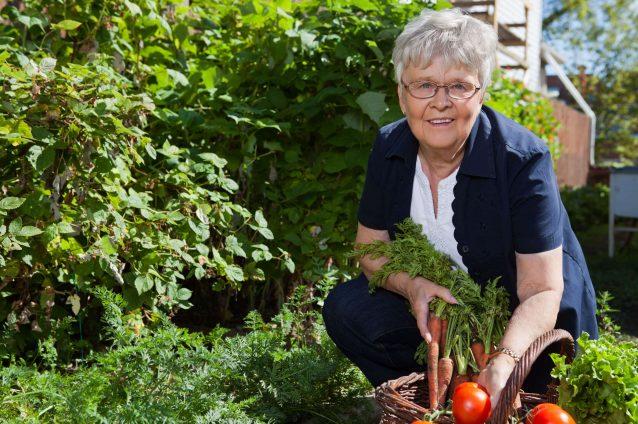 Gardening Isn't Just A Spring Activity!